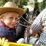In carrozza nell'Anfiteatro Morenico del Canavese