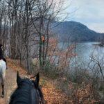 A cavallo lungo la Via Francigena