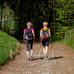 Escursioni nel verde Canavese